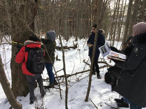 Students in the field with the Ecology Lab
