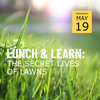 Background of grass lawn, text in foreground reading Lunch & Learn: The Secret Lives of Lawns, Wednesday May 19
