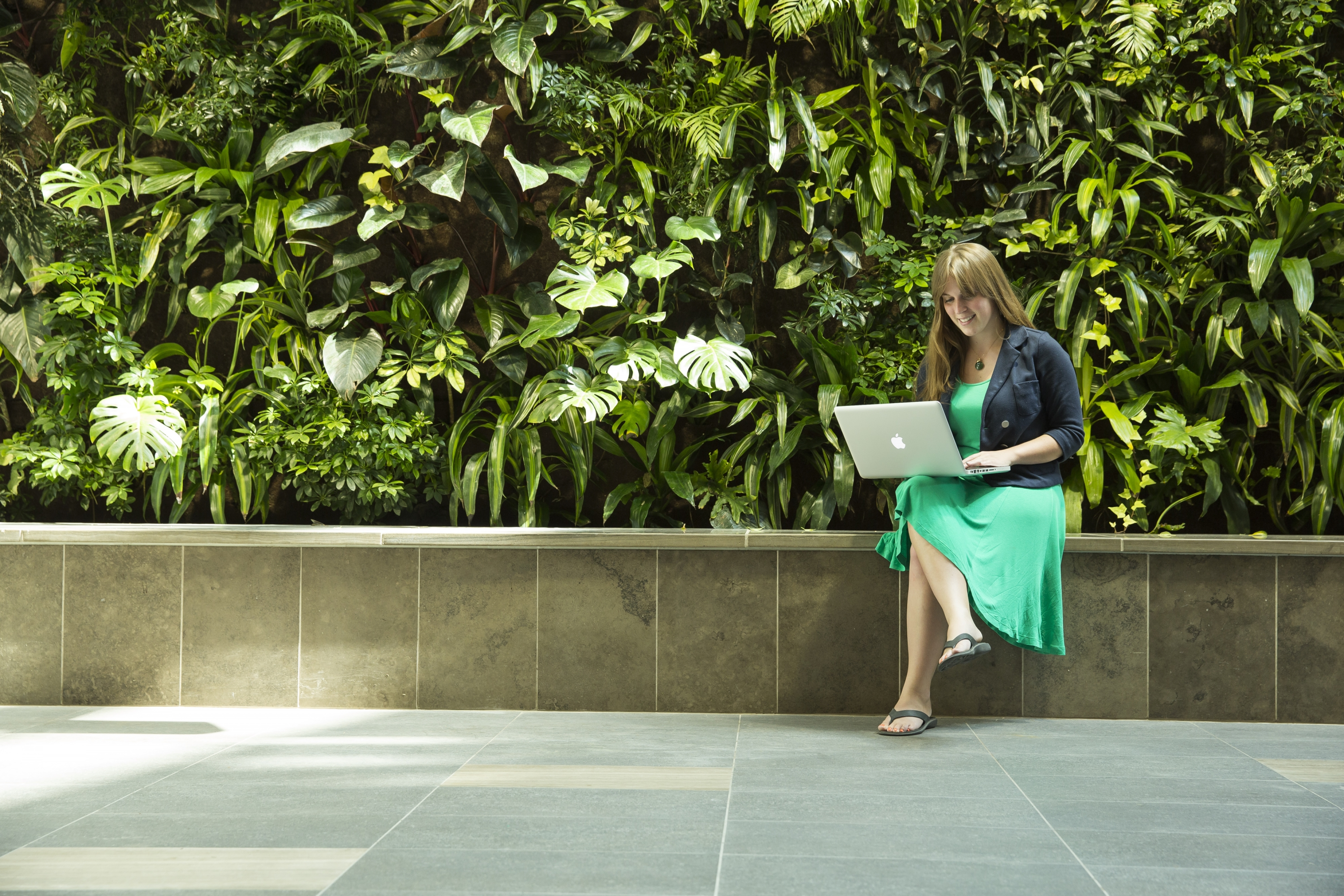 Green wall with student working