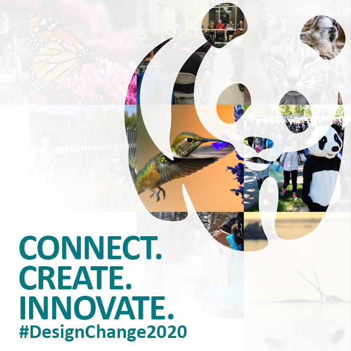 Connect. Create. Innovate. Designing Change WWF poster