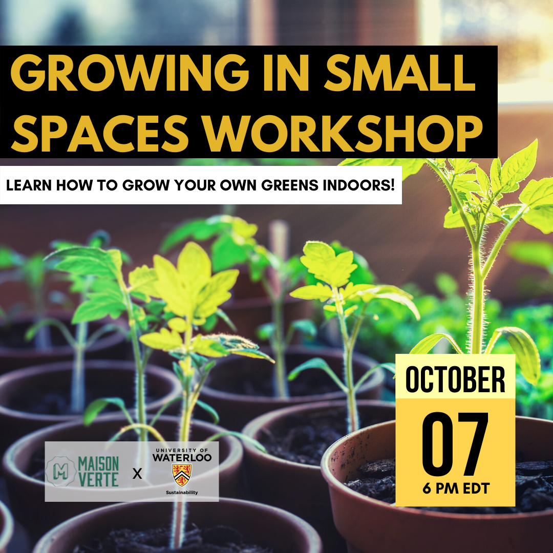Growing in Small Spaces Workshop Promo