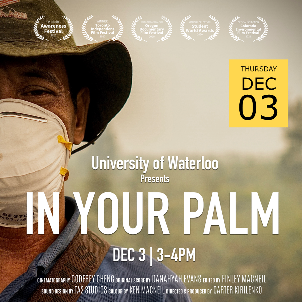 In Your Palm film poster; man with white face mask in front of hazy field