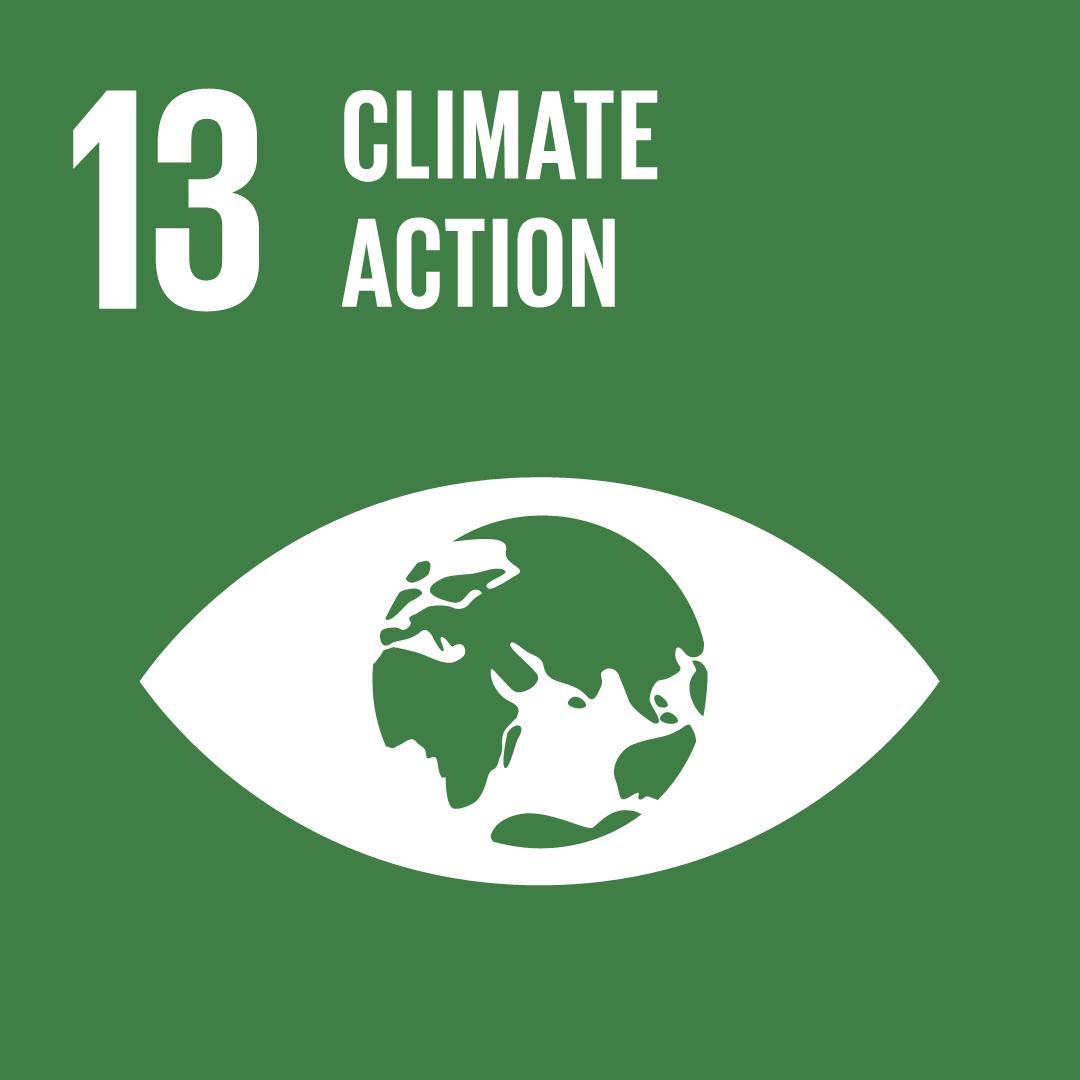 SDG 13 logo: climate change