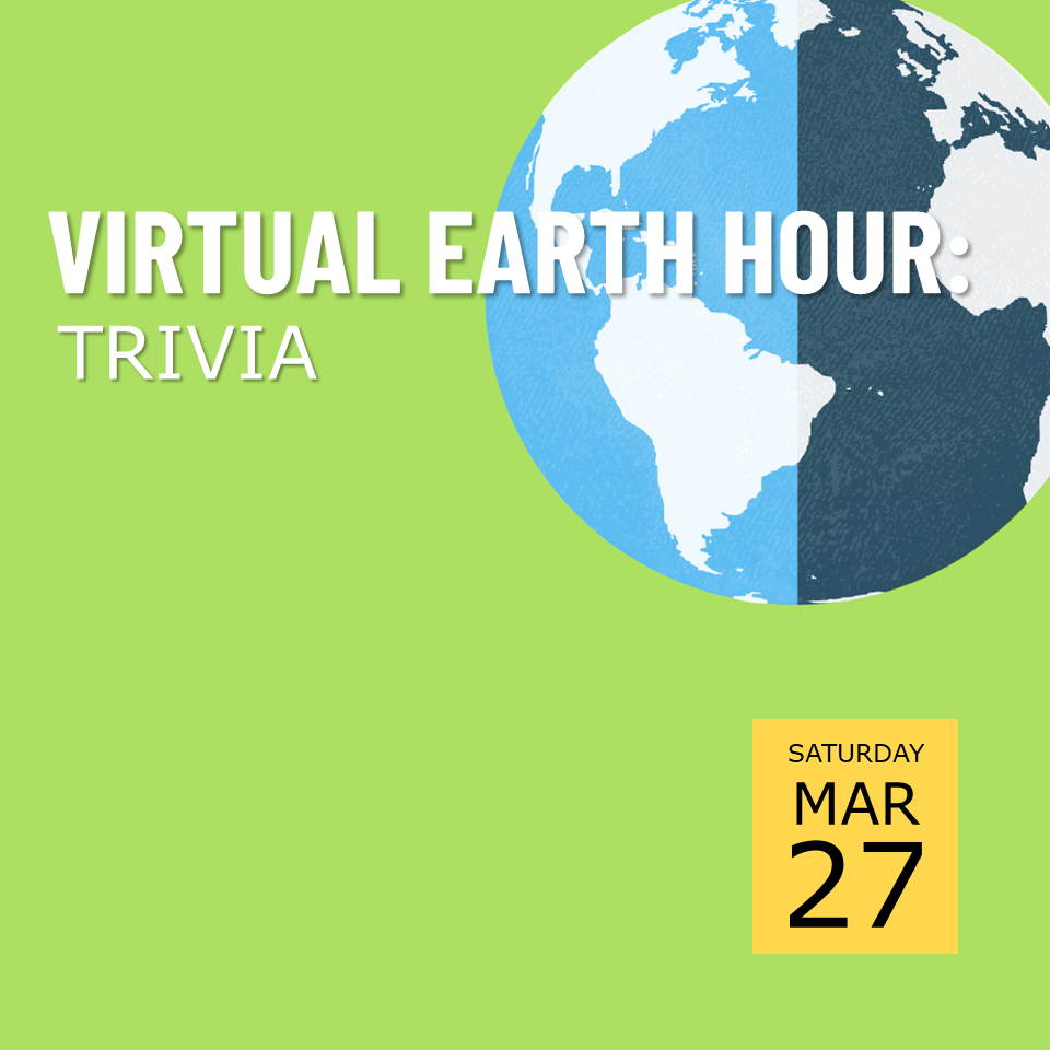 Virtual Earth Hour Trivia poster; graphic of Earth in top right corner with bright green background