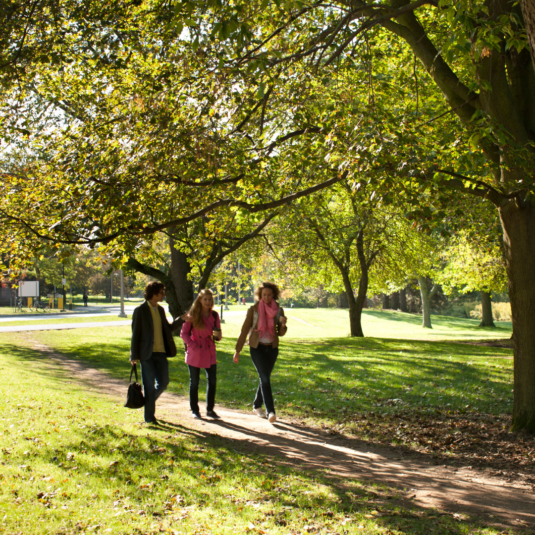 Three people walking along path on campus; trees in the background