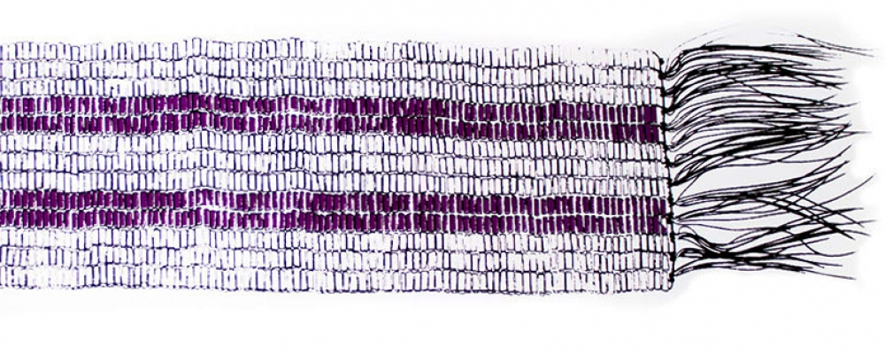illustration of belt with two purple rows in white background