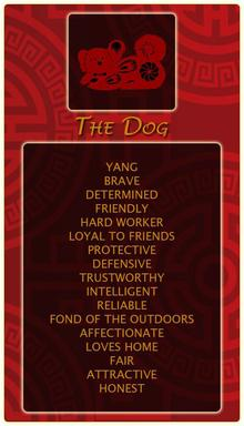 Characteristics of dog people