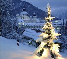 Christamas tree in the snow