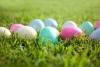 coloured eggs on grass