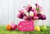 Easter Tulios in a bsket