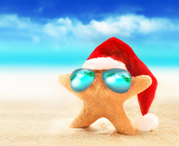 Starfish wearing a santa hat on the beach