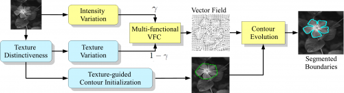 The overall architecture of the proposed hybrid structural and texture-guided vector field convolution approach