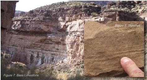 Bass limestone