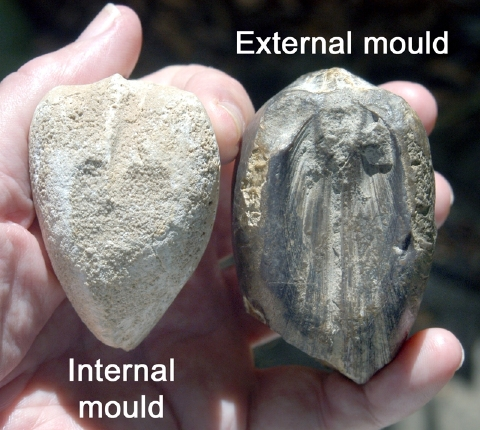 Internal and External Casts