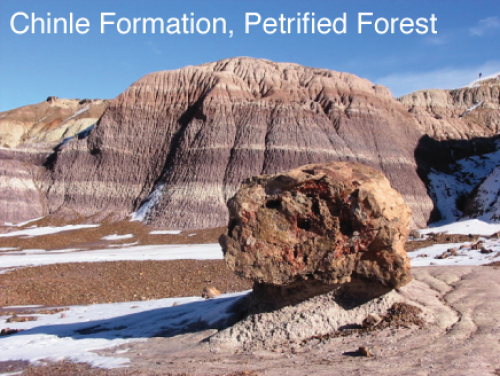 Chinle Formation, Petrified Forest