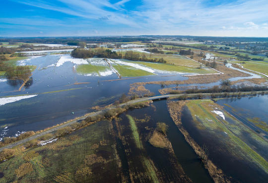 flooded agricultural field