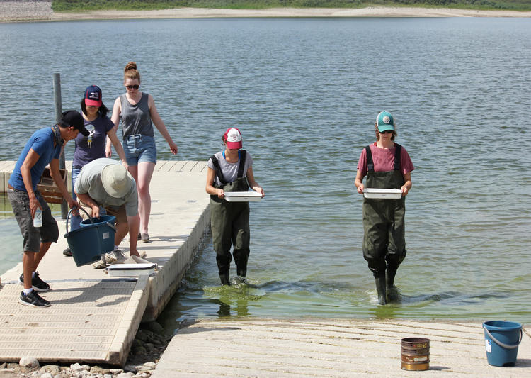 students doing water research in grand river