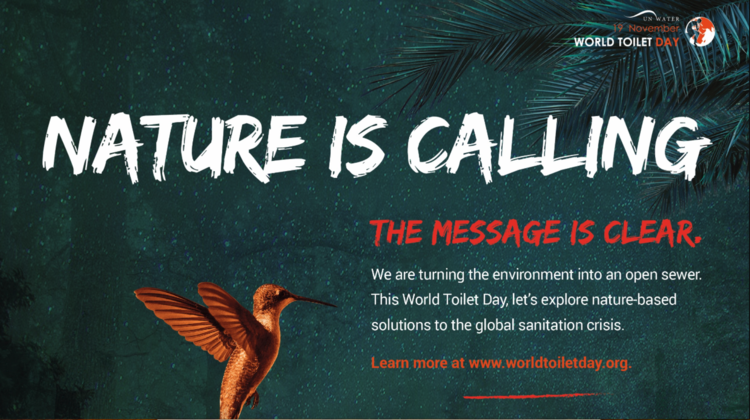 Nature is calling, the message is clear - world toilet day UN