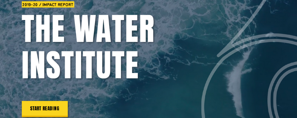 The Water Institute Impact Report 2019-20