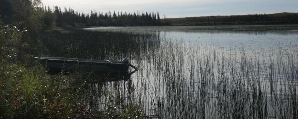 ekali lake