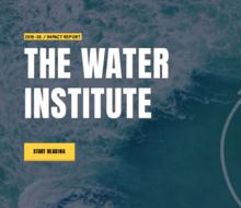Water Institute impact report