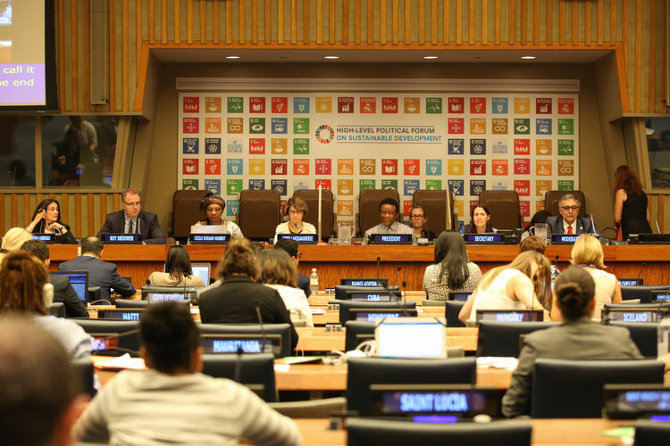 United Nations High-Level Political Forum on Sustainable Development