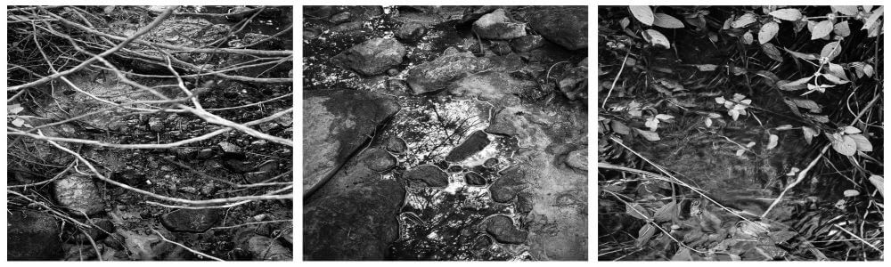 pictures of water landscapes in black and white by rob de loe