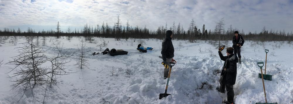 Students in the field in the winter