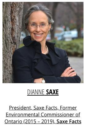 Diane Saxe