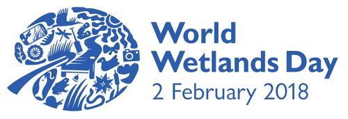 world wetlands day poster