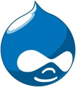 Drupal logo (water drop with eyes)