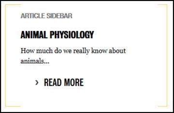 Nested publication zoology