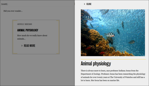 Nested publication article popup