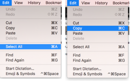 Edit then Select and Edit then Copy
