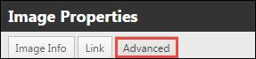 Image Properties Advanced tab.