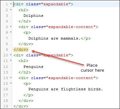 Place cursor after closing div tag.