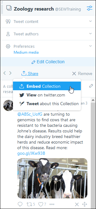 Screenshot of new collection column, its settings expanded, the Share button selected, and the Embed Collection option highlighted.