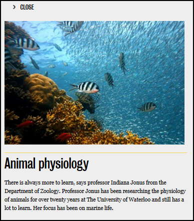 nested publication popup zoology