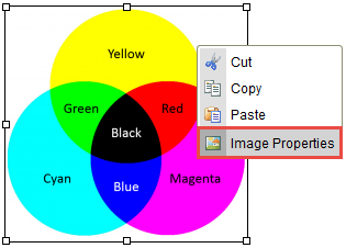 Image Properties option selected.