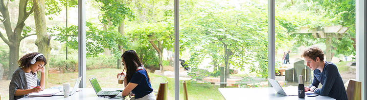 three students studying individually on campus in front of a window