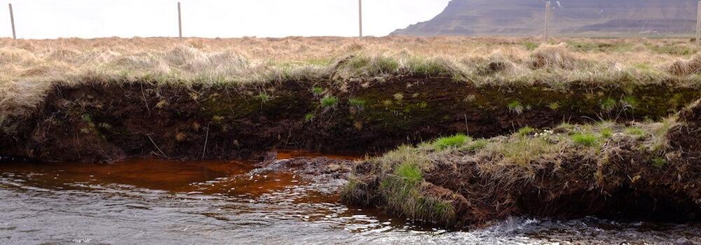 Dissolved organic carbon runoff from peatland drainage in the Snæfellsnes peninsula, Iceland