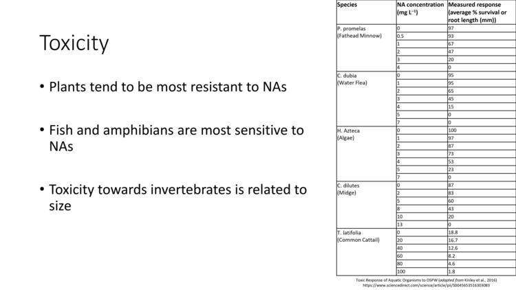 Page 12 of Naphthenic Acid Overview Presentation