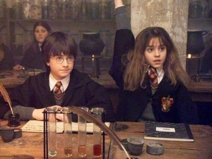 An image of Harry Potter and Hermione Granger sitting at a desk, with Hermione's hand raised