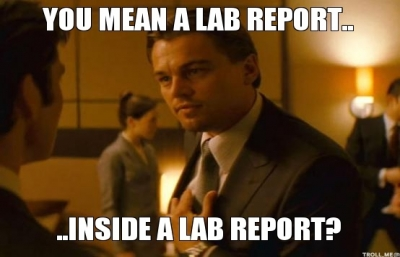 """""""You mean a lab report...inside a lab report?"""""""