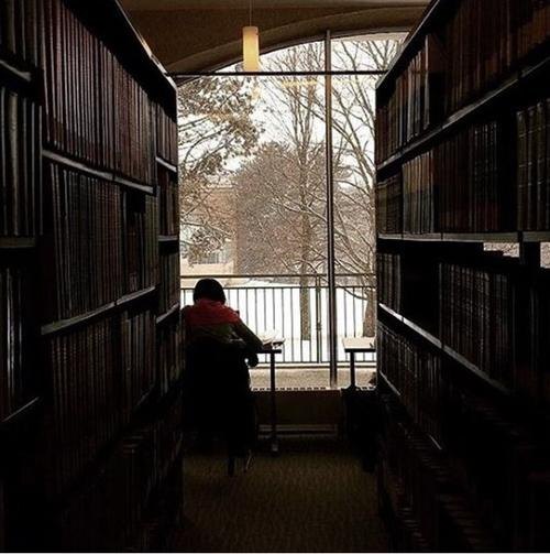 student studying in library beside window