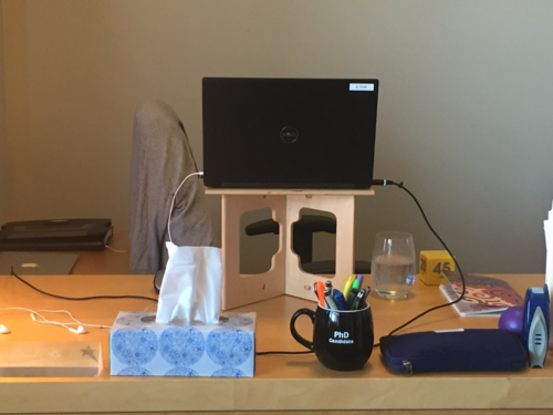 Image of the author's workstation