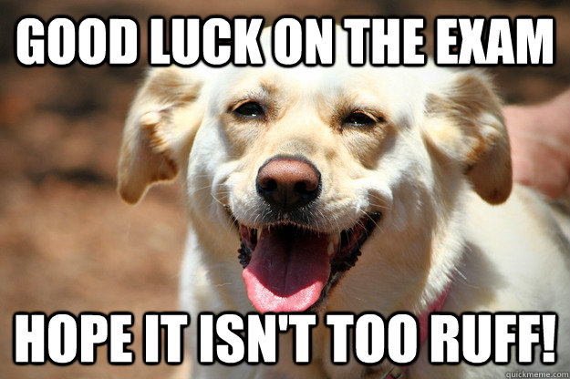 "Image of a happy dog with the caption ""Good luck on the exam, hope it isn't too ruff"""