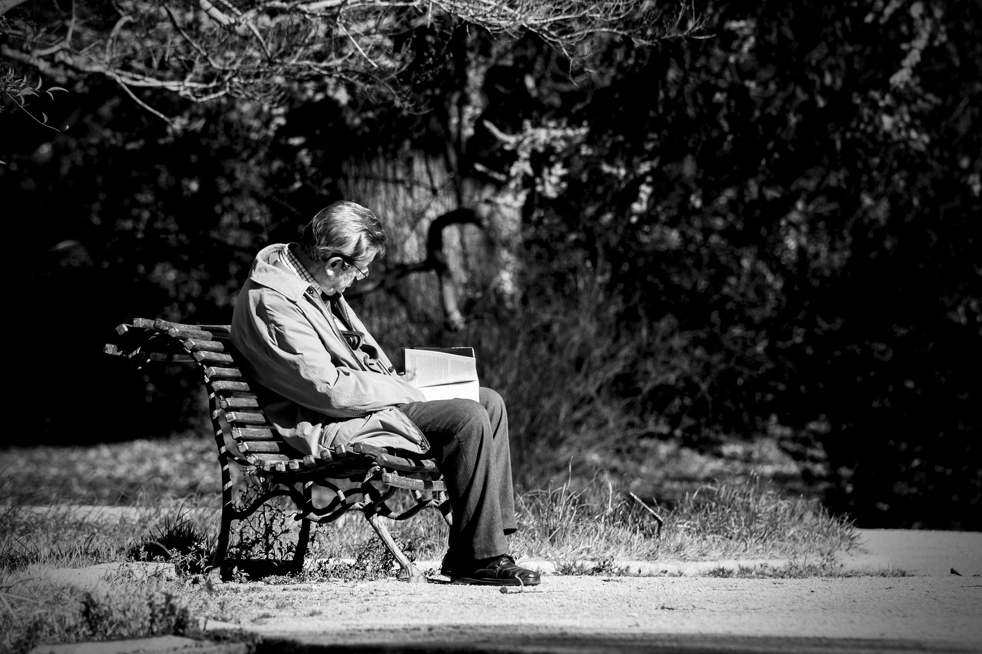old man reading on a park bench
