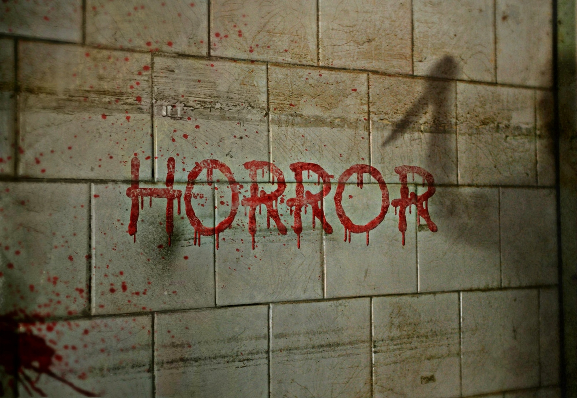"Picture of the word ""HORROR"" spelt in blood on a wall. On the wall there is also the shadow of someone holding a knife"